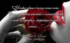Quote Alma de Rosas 14